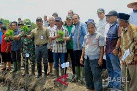 Petani Bangka Barat diminta aktifkan gapoktan