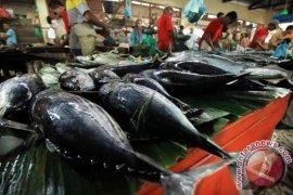 Produksi Ikan Asin Karangantu Serang Melimpah