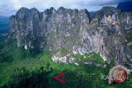YKAN dorong konservasi alam Kabupaten Berau