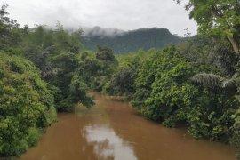 PT PTUN Jakarta diharap selamatkan lingkungan Meratus
