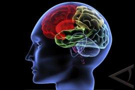 """""""Optogenetik"""" otak-atik otak"""