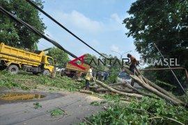 Mewaspadai hujan disertai petir-angin kencang di Sumsel dan sejumlah wilayah lain di Indonesia