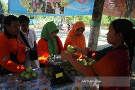 Pokdarwis Bojonegoro Kembangkan Tanaman Jambu Kristal