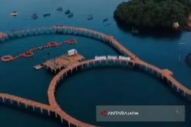 Pembangunan Sarana Penunjang Wisata Kampung Kerapu Situbondo Rampung