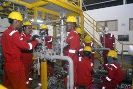 Artikel : Di Ciloto anak muda Papua itu digembleng