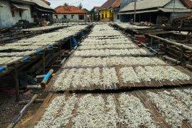 Ekspor Bengkulu naik 96,70 persen pada Oktober