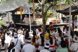 "Ratusan mahasiswa Unhi Denpasar ""Mejaya-jaya"""