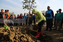 Hutan Kota Tekan Banjir di Surabaya