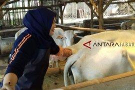 Jaga hewan di pergantian musim, peternak Cianjur diminta ini