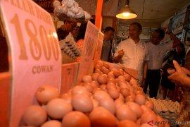 Harga telor dan ayam  naik jelang Natal di Banjarmasin