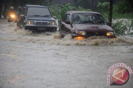 Walhi: Deforestasi hutan picu banjir di Bengkulu
