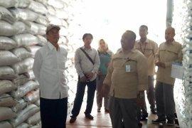 Ketersediaan beras Kapuas Hulu aman hingga awal 2019