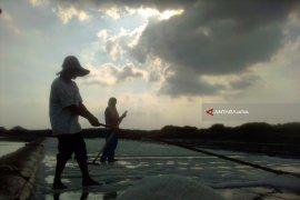 Musim Hujan, Petani Garam di Probolinggo Beralih Budi Daya Bandeng
