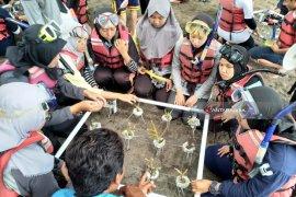 """""""Goes To Village"""", GenBI Jember Tanam Terumbu Karang di Banyuwangi"""