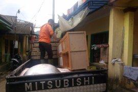 Warga dua kampung di Sukabumi mengungsi akibat pergerakan tanah