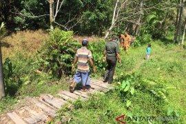 Tidak ditemukan jejak buaya yang menghebohkan warga Tapteng
