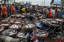 DKP Kaltim Optimis Produk Perikanan Meningkat