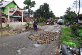 Komunitas truk Singkawang perbaiki jalan secara swadaya