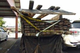 Polisi amankan satu truk kayu ilegal
