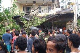 Seorang warga Denpasar tewas akibat pohon tumbang