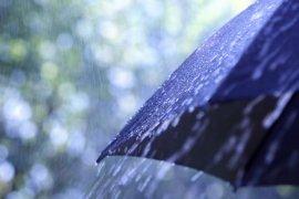 Jumat pagi, Jambi diguyur hujan intensitas sedang hingga lebat