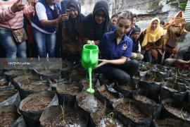 Nasdem Bagikan Benih Padi Kepada 2.670 Warga Surabaya