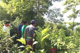 Klungkung kembangkan wisata alam desa