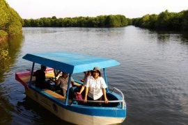"Hutan mangrove Lubuk Kertang ""Ikon"" wisata Langkat"