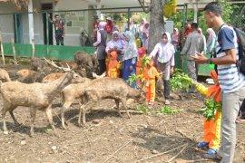 KPH Parengan Tuban Libatkan Masyarakat Beternak Rusa
