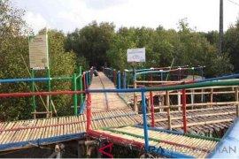 Ekowisata mangrove di Muaragembong Bekasi