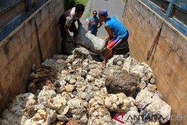 Harga tampung getah karet petani Aceh Barat terus naik
