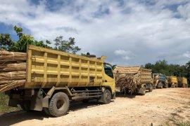 Satgas Pamtas gagalkan penyeludupan 20 ton rotan dan TKI ilegal