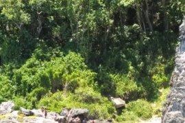 Basarnas berhasil temukan jasad pelajar terjatuh dari tebing
