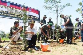 Akademisi: TNI miliki modal sosial kuat sebagai perekat bangsa