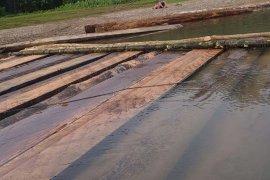 Polisi amankan ratusan kayu diduga hasil pembalakan liar