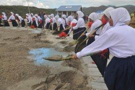 Pembangunan huntap korban bencana Palu Page 2 Small