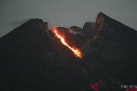 Guguran lava pijar dari Gunung Merapi