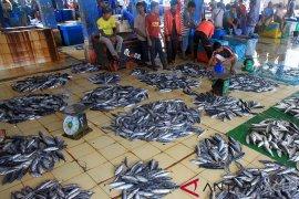 Kota Pontianak butuh Rp5 miliar bangun kembali Pasar Ikan Flamboyan