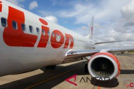 Lion Air's losses touch US$20 million following Boeing Max ban