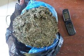 Polisi Langkat amankan ganja 1.300 gram dari penumpang bus