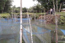 DKP Bangka Barat akan selektif tentukan kelompok penerima bantuan