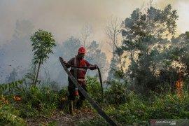 Jumlah titik panas indikasi Karhutla di Riau turun drastis