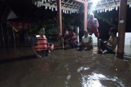 Banjir rendam rumah dan lahan pertanian di Jember