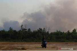 86 titik panas indikasi kebakaran hutan-lahan terdeteksi di Riau