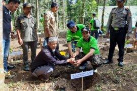 PT Len Industri tanam 15.000 pohon kopi Gambung di Bandung
