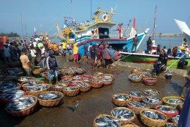 Harga ikan tongkol anjlok di Aceh