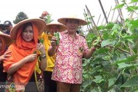 Tommy Soeharto ingin mengembalikan kejayaan pertanian dan peternakan