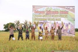 Gubernur panen padi di lahan Serasi