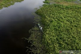 Pemprov Gorontalo gandeng JICA untuk penyelamatan Danau Limboto