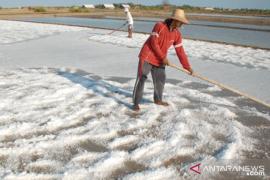 Produksi garam rakyat Sampang 2018 tak terserap
